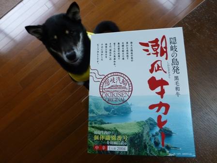 潮凪牛カレー1