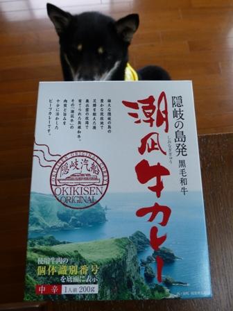 潮凪牛カレー2