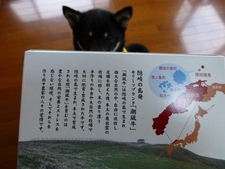 潮凪牛カレー3