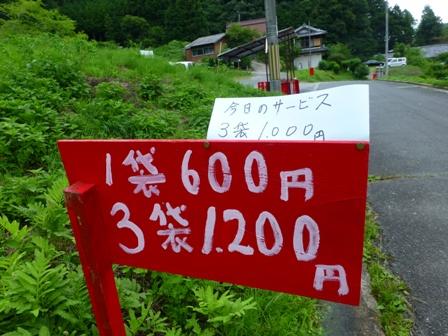 柳生花しょうぶ園37