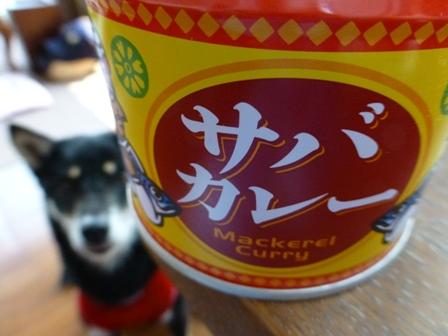信田缶詰サバカレー4