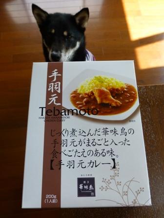 手羽元カレー5