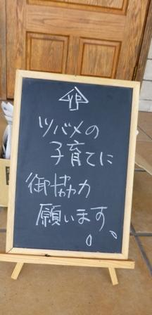 Ingleside cafe6
