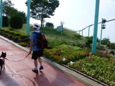 生駒山上遊園地12