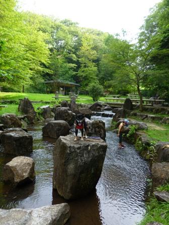 生駒山麓公園4