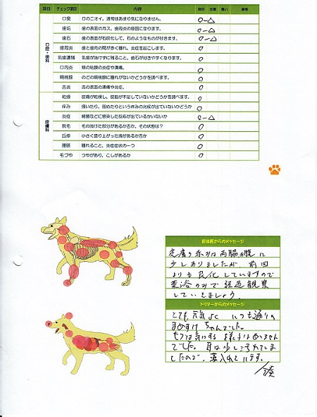 動物病院(08022013)4