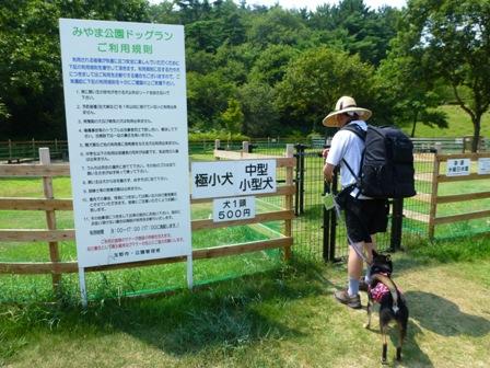 みやま公園ドッグラン5