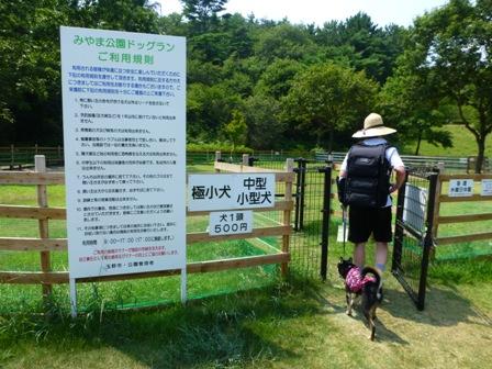 みやま公園ドッグラン6