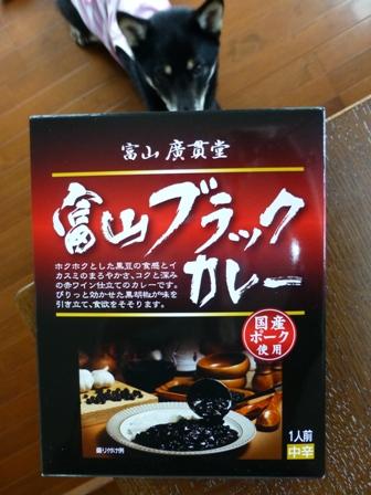 富山ブラックカレー1