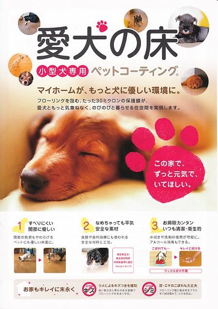 愛犬の床14