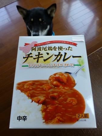阿波尾鶏を使った チキンカレー2