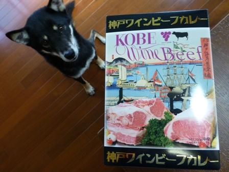 神戸ワインビーフカレー1