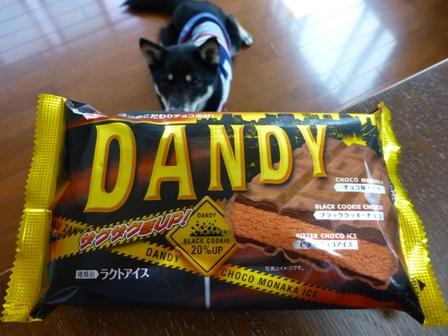 DANDY2.jpg