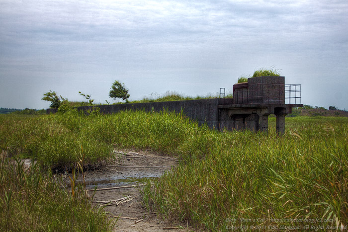 浸透実験池 コンクリートの遺構