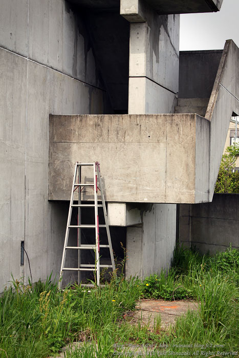 土浦のブラックマンション_階段.jpg