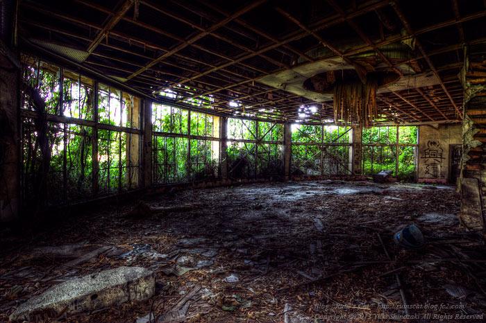IMG_7997_8_9_tonemapped_ruinscat.jpg