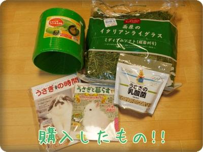 goods1311236.jpg