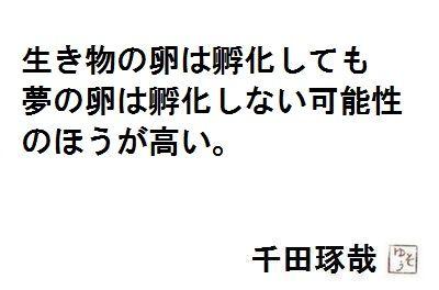 2013052519511130b.jpg
