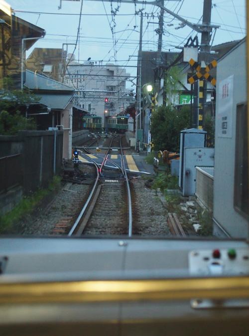 P8032005_edited-1.jpg