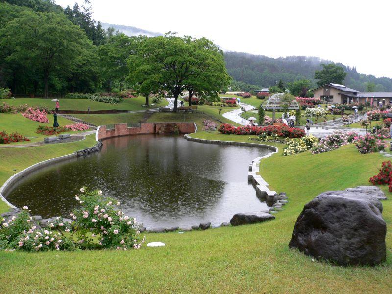 芝生広場池