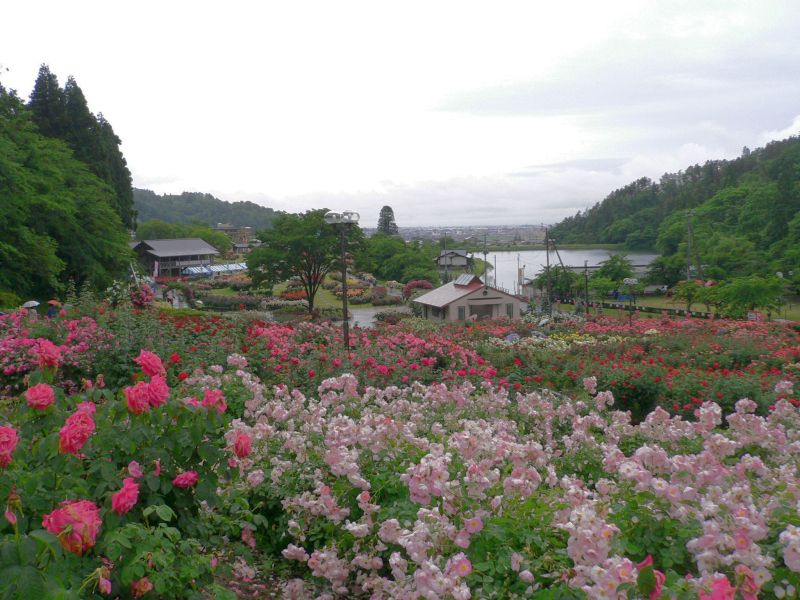 鳩山ピース園周辺