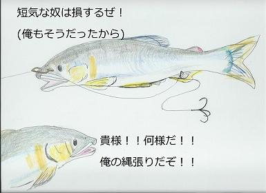 20130916121506c5e.jpg