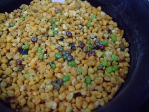 リトープス実生苗2013.08.26実生~現在2色色分けな苗が発芽しています♪2013.10.04