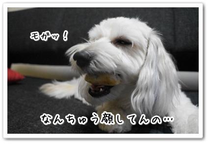 20130823004510af4.jpg