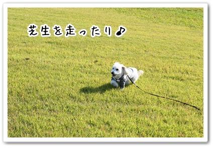 201310192256180cf.jpg