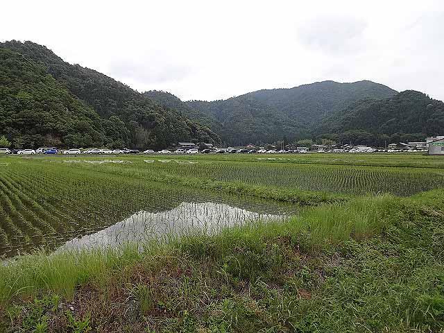 wakasa2013008.jpg