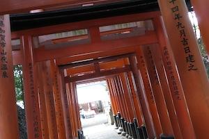 b_koiiro_p_0134.jpeg
