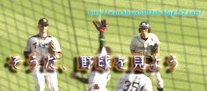 そうだ、野球を見よう ボールボーイインフィールドver