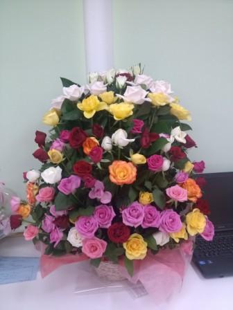 IMG_20130408_205414.jpg